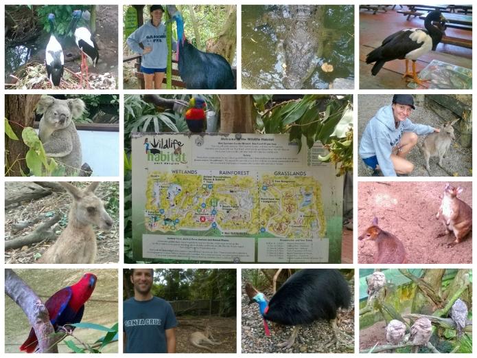 The Wildlife Habit